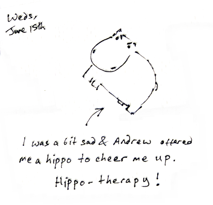 Hippo-therapy is an effective treatment for the sads.